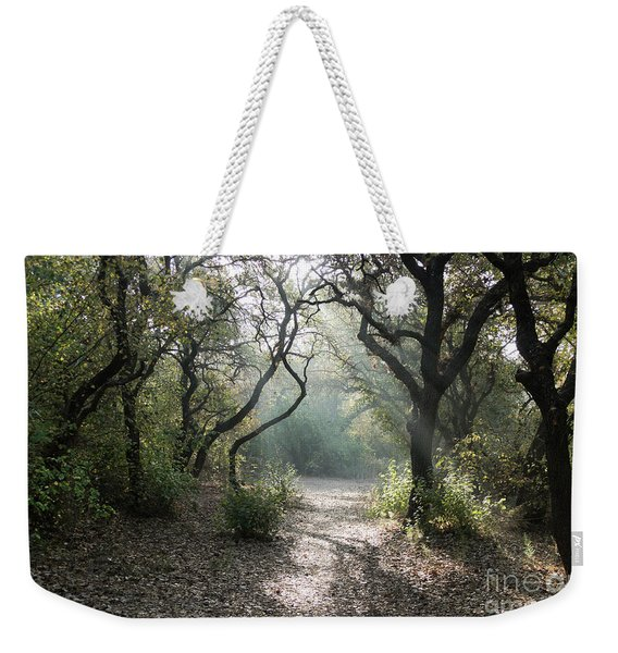 Weekender Tote Bag featuring the photograph Here Comes The Sun by Arik Baltinester
