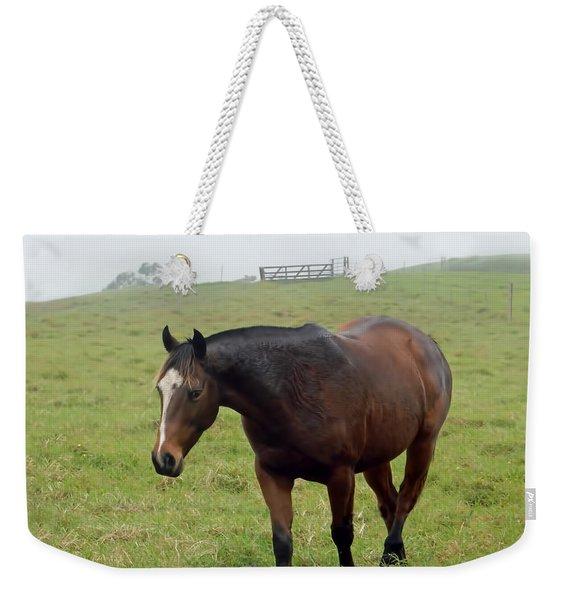 Horse In The Fog Weekender Tote Bag