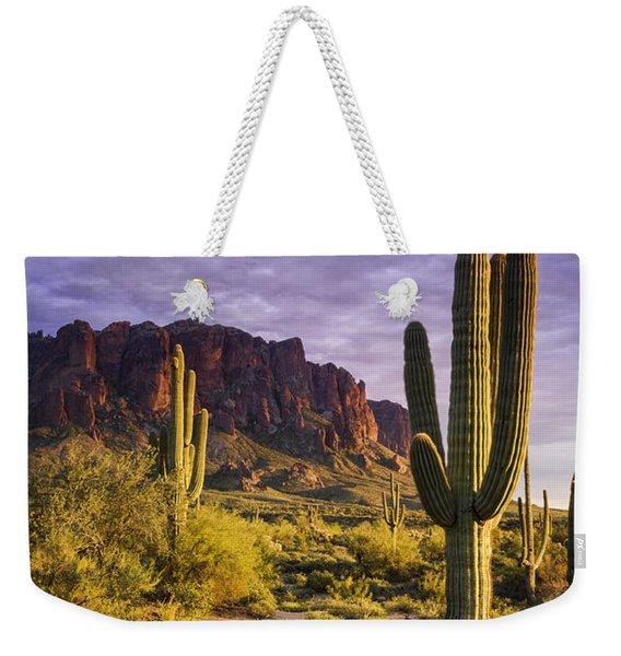 In The Desert Golden Hour  Weekender Tote Bag
