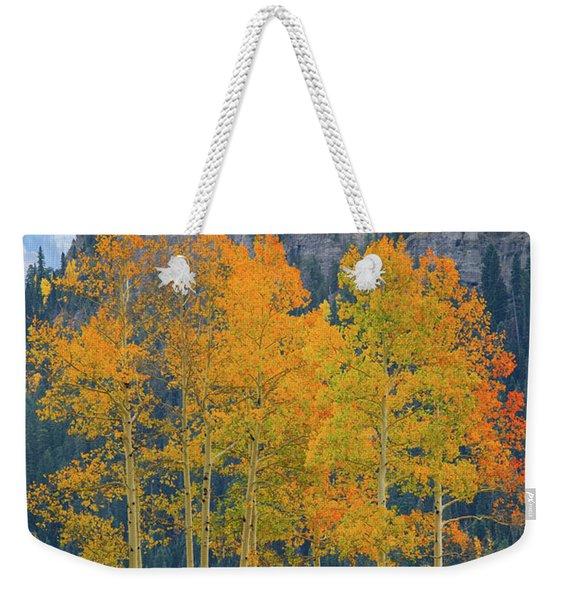 Just The Ten Of Us Weekender Tote Bag