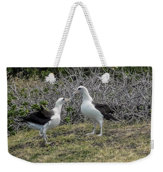 Laysan Albatross Hawaii #2 Weekender Tote Bag