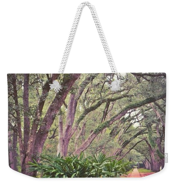 Love The #liveoak #trees And This Weekender Tote Bag