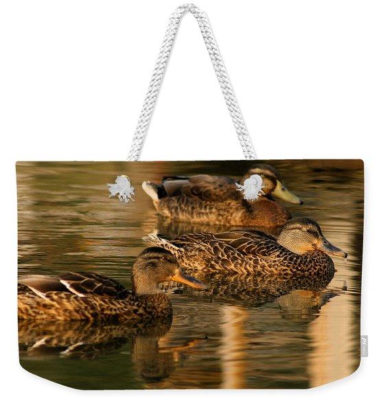 Mallards Swimming In The Water At Magic Hour Weekender Tote Bag