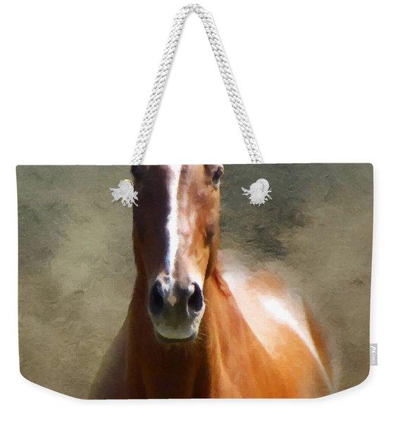 Misty In The Moonlight P D P Weekender Tote Bag