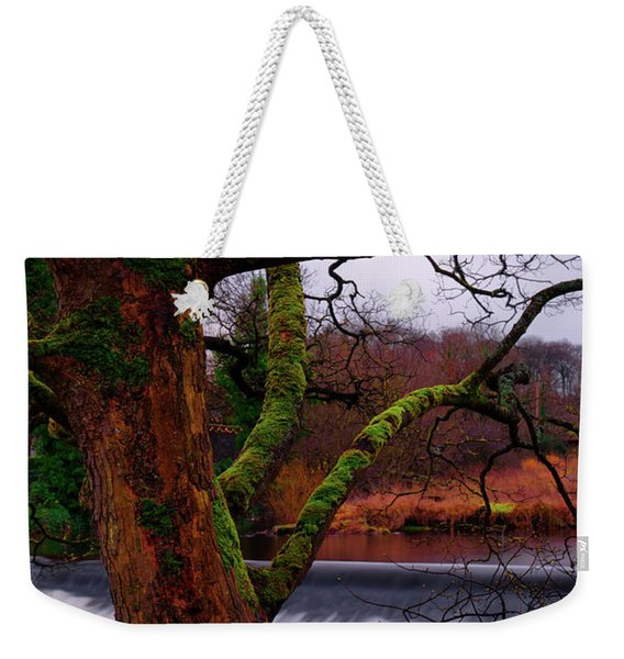 Mossy Tree Leaning Over The Smooth River Wharfe Weekender Tote Bag