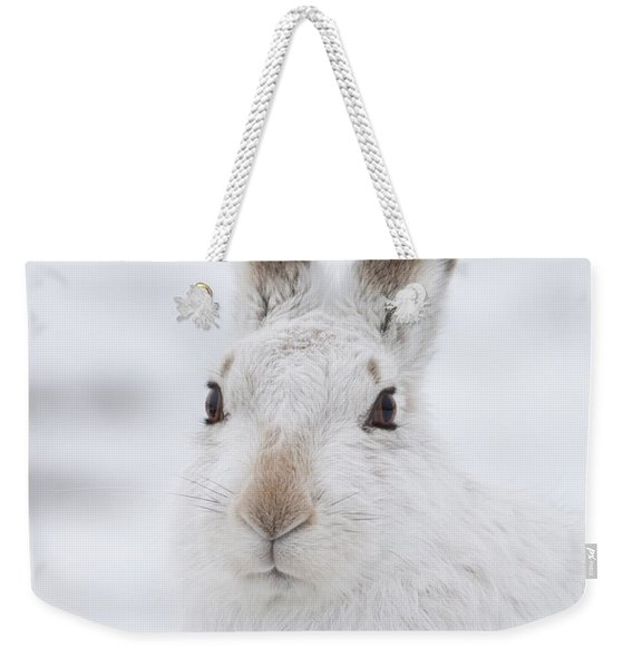 Mountain Hare In The Snow - Lepus Timidus  #1 Weekender Tote Bag