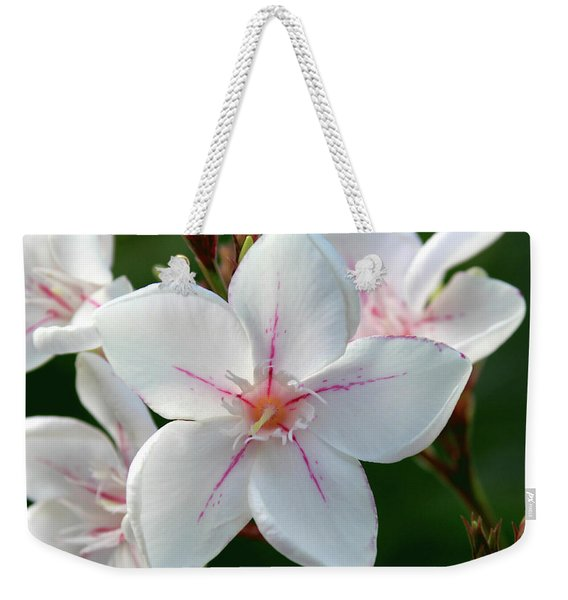 Oleander Harriet Newding  2 Weekender Tote Bag