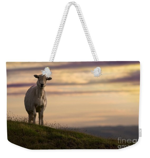 On The Top Of The World Weekender Tote Bag