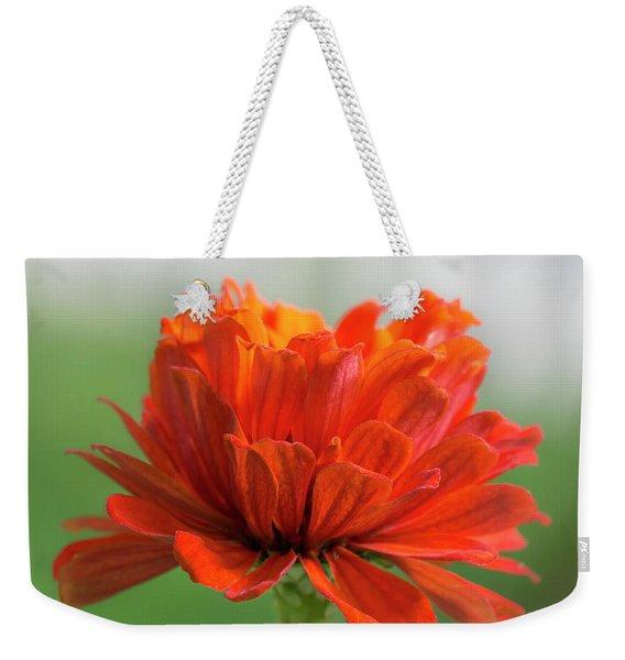 Red Zinnia  Weekender Tote Bag