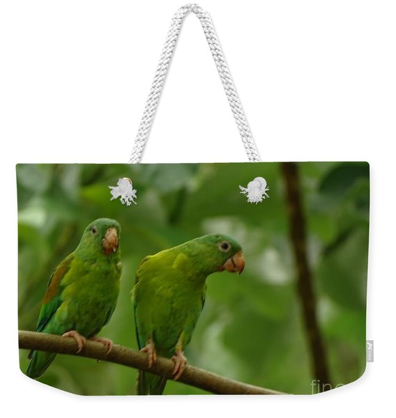 Orange -chinned Parakeets  Weekender Tote Bag