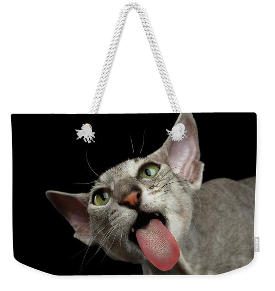Peterbald Sphynx Cat On Black Background Weekender Tote Bag