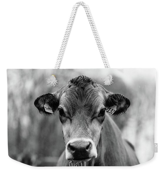Portrait Of A Dairy Cow In The Rain Stowe Vermont Weekender Tote Bag