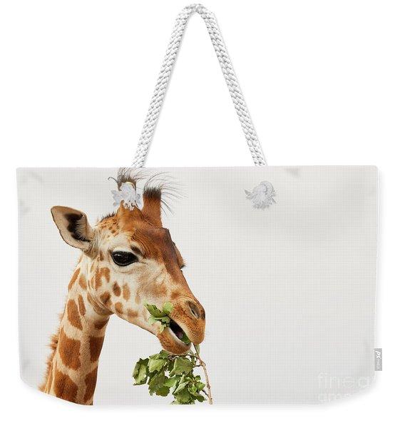 Portrait Of A Rothschild Giraffe  Weekender Tote Bag