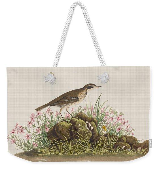 Prairie Titlark Weekender Tote Bag