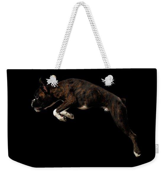 Purebred Boxer Dog Isolated On Black Background Weekender Tote Bag
