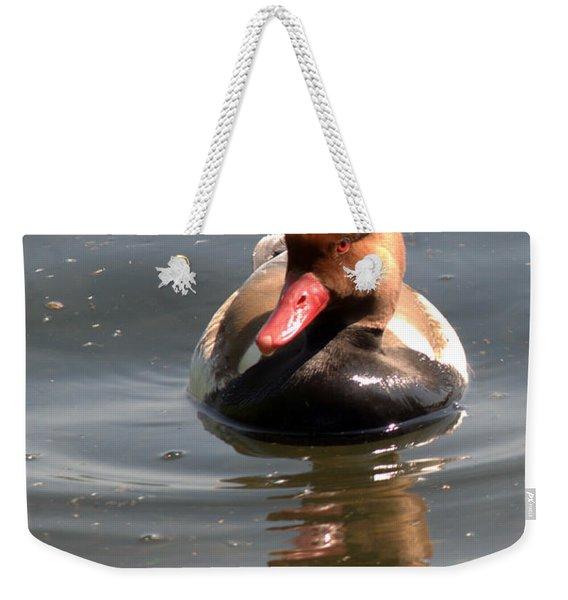 Red-crested Pochard Weekender Tote Bag