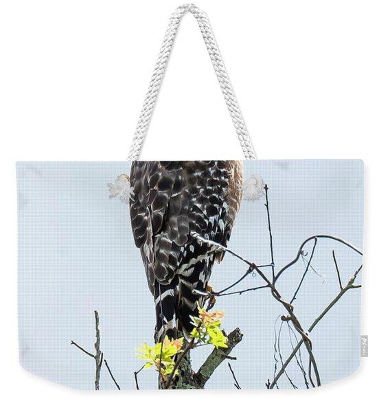 Red Shouldered Hawk Weekender Tote Bag