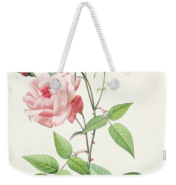 Rosa Indica Vulgaris Weekender Tote Bag