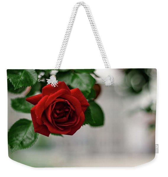 Roses In The City Park Weekender Tote Bag