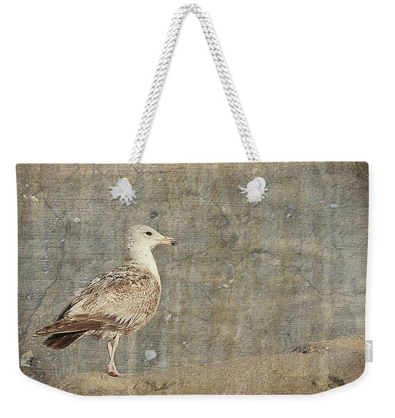 Seagull - Jersey Shore Weekender Tote Bag