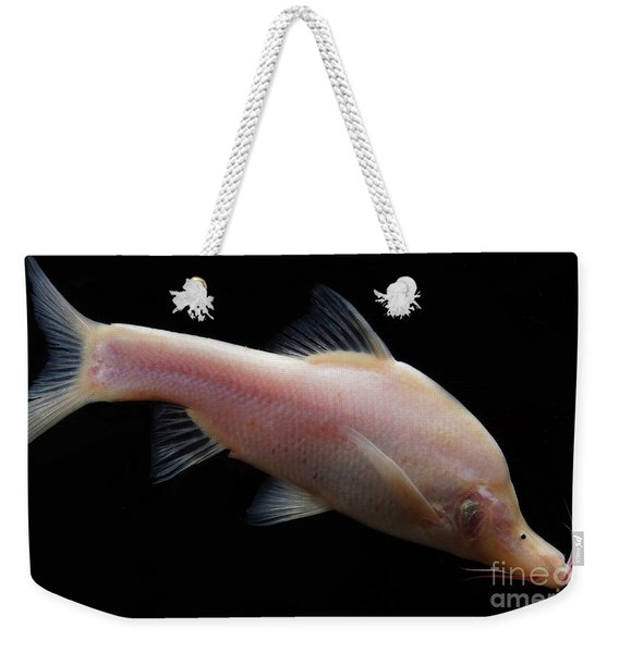 Small Eye Golden Line Barbel Weekender Tote Bag