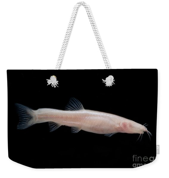 Small Headed Cave Loach Weekender Tote Bag