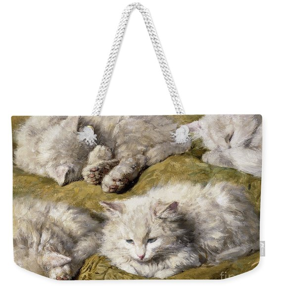 Studies Of A Long Haired White Cat Weekender Tote Bag