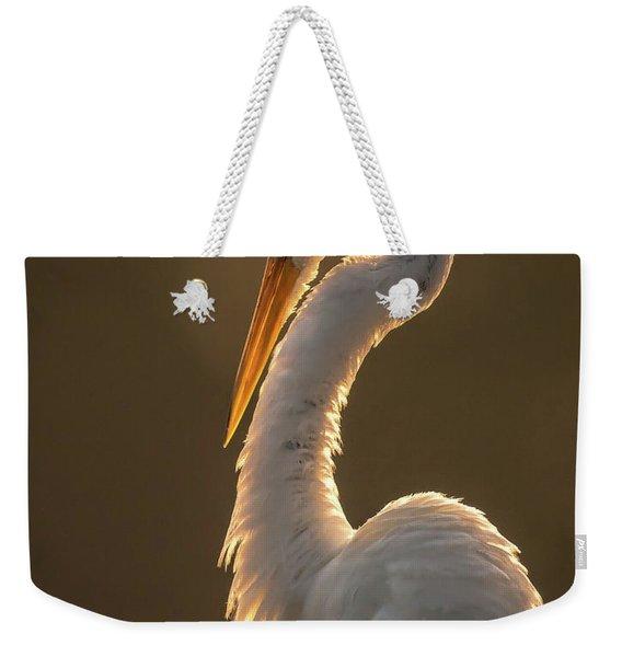 Sunbathing Weekender Tote Bag