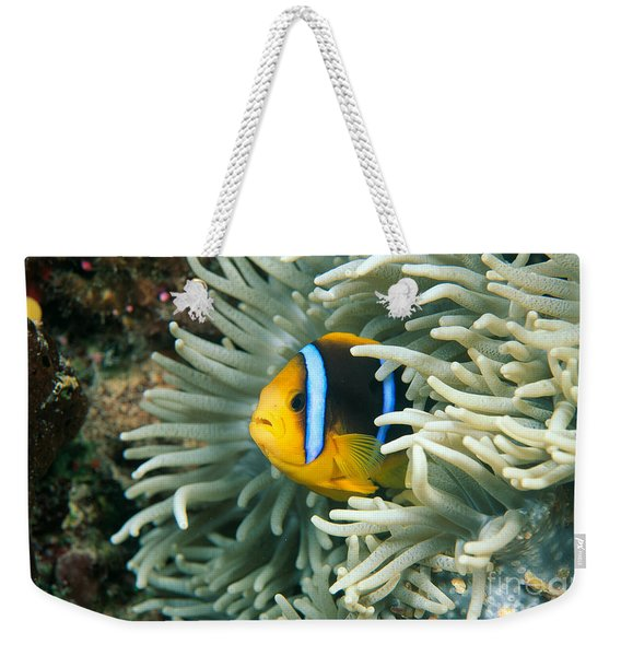 Underwater Close-up Weekender Tote Bag