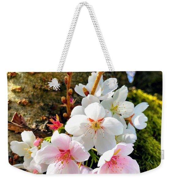White Apple Blossom In Spring Weekender Tote Bag
