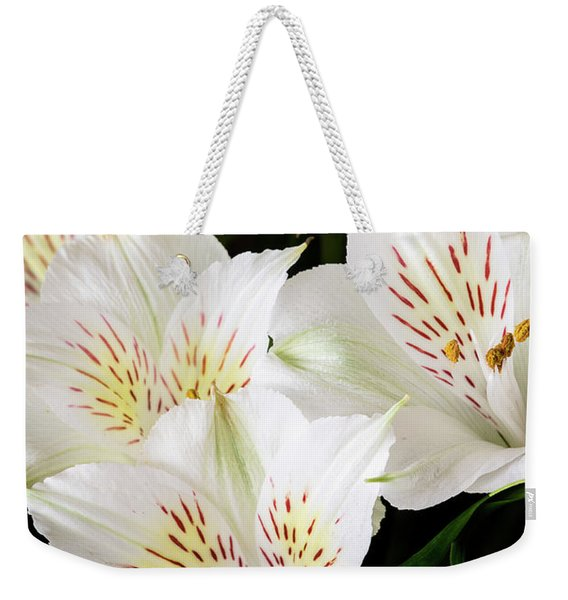 Weekender Tote Bag featuring the photograph White Peruvian Lilies In Bloom by Richard J Thompson