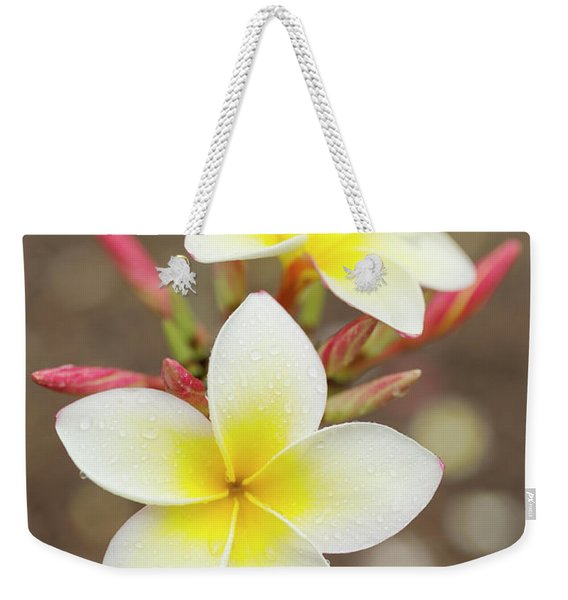 Weekender Tote Bag featuring the photograph White Plumeria by Charmian Vistaunet