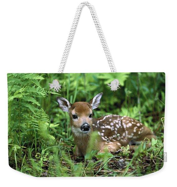 White-tailed Deer Odocoileus Weekender Tote Bag