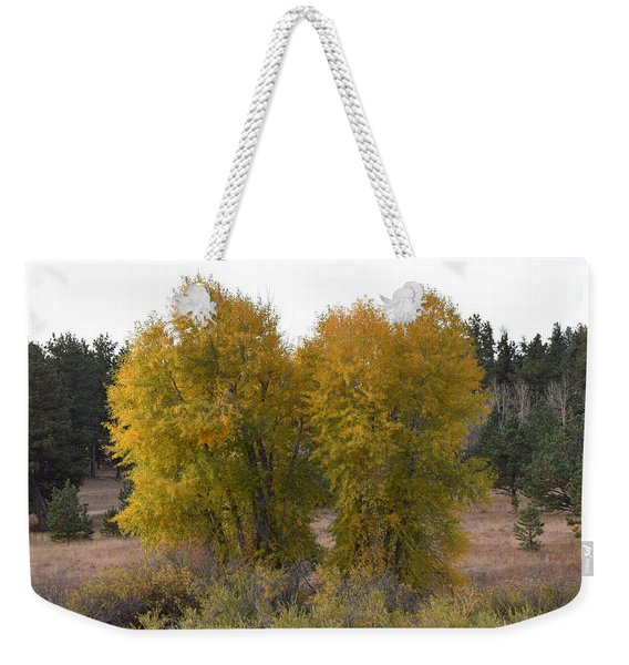 Aspen Trees In The Fall Co Weekender Tote Bag