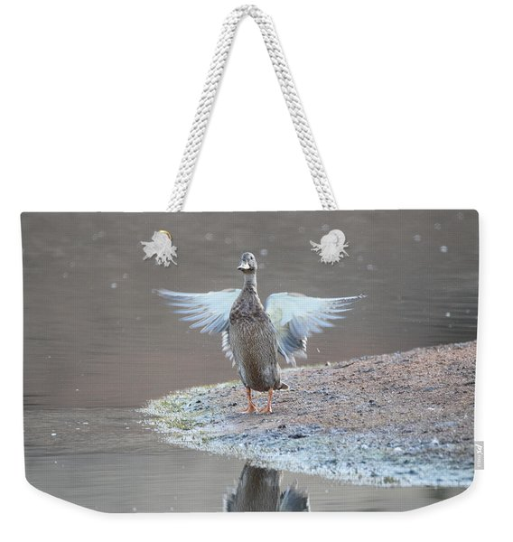 Weekender Tote Bag featuring the photograph Mallard Duck Burgess Res Divide Co by Margarethe Binkley