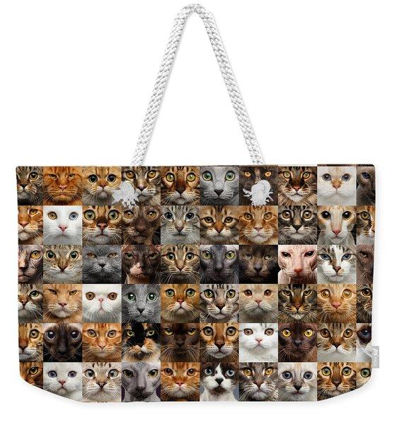 100 Cat Faces Weekender Tote Bag