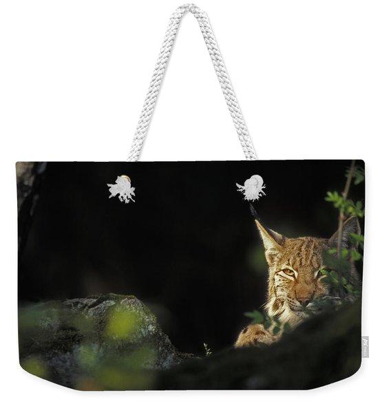 151001p105 Weekender Tote Bag