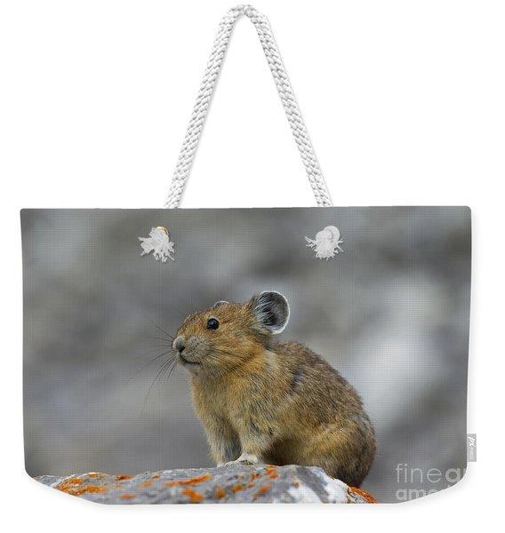 151221p238 Weekender Tote Bag