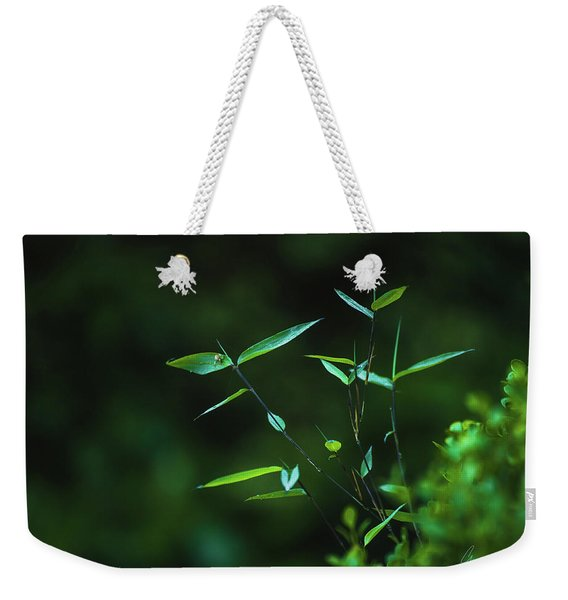 At Peace Weekender Tote Bag
