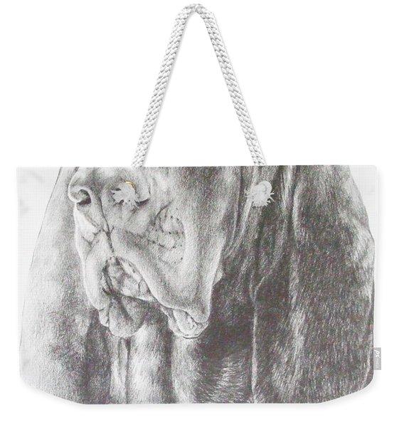 Black And Tan Coonhound Weekender Tote Bag