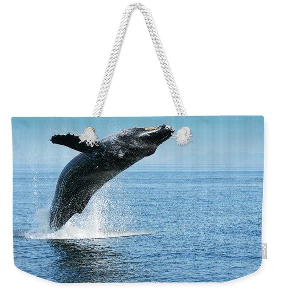 Breaching Humpback Whales Happy-1 Weekender Tote Bag