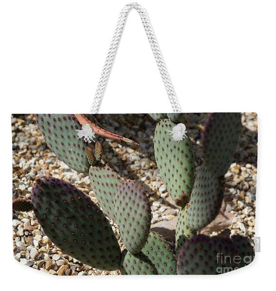 Cacti Weekender Tote Bag