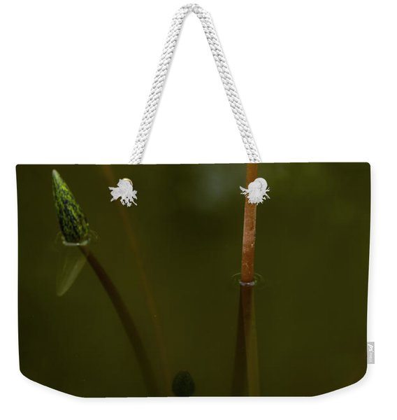 Deep Lily Reflection Weekender Tote Bag