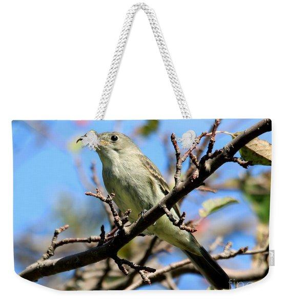 Eastern Wood-pewee Weekender Tote Bag