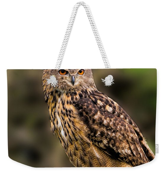 Eurasian Eagle Owl Perched On A Post Weekender Tote Bag