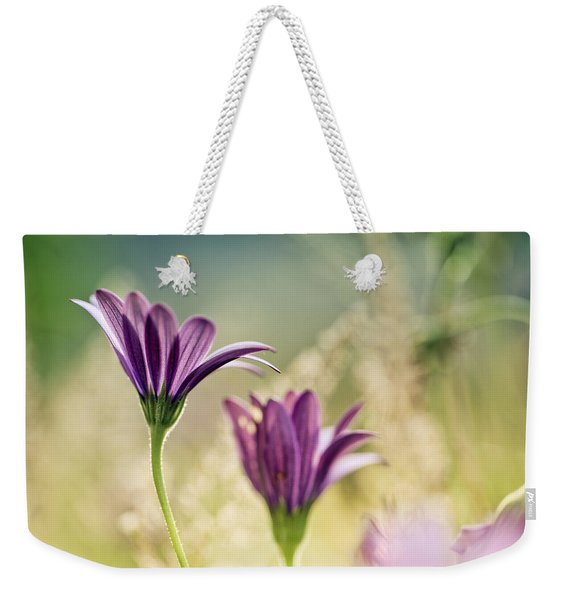 Flower On Summer Meadow Weekender Tote Bag
