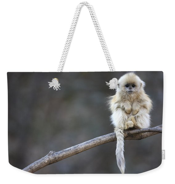 Golden Snub-nosed Monkey Rhinopithecus Weekender Tote Bag