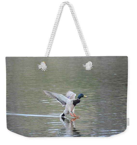 Weekender Tote Bag featuring the photograph Mallard Duck Male by Margarethe Binkley