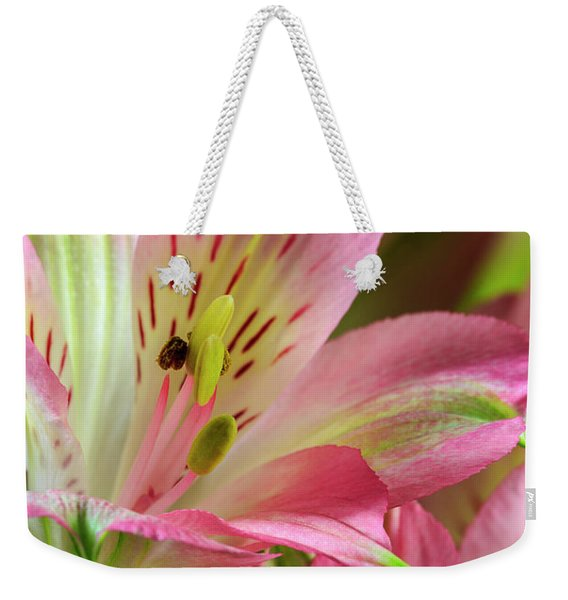 Peruvian Lilies In Bloom Weekender Tote Bag