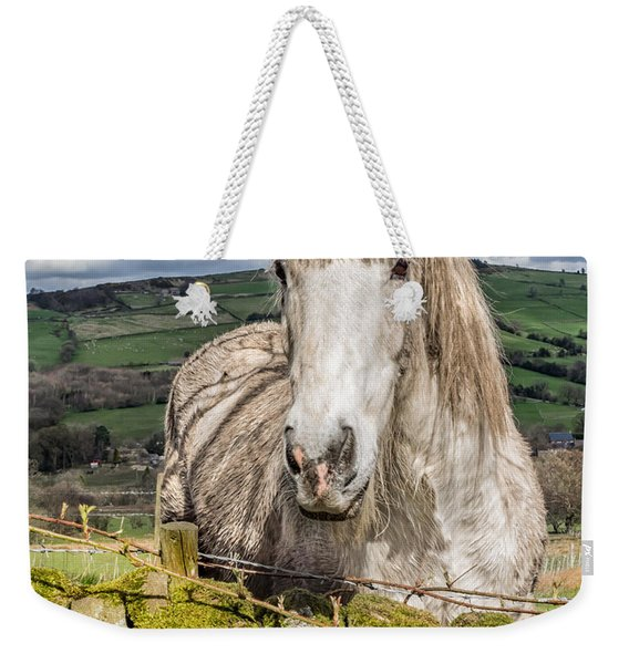 Weekender Tote Bag featuring the photograph Rustic Horse by Nick Bywater